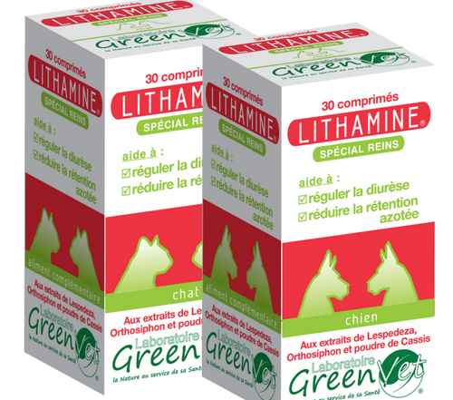 Lithamine chien chat