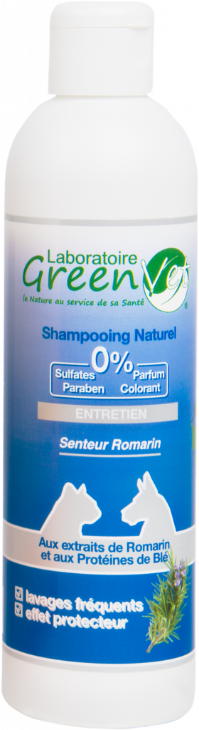 shampooing entretien